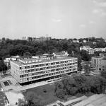 miestprojektas Kaunas